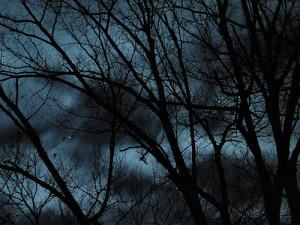 Notti senza luna