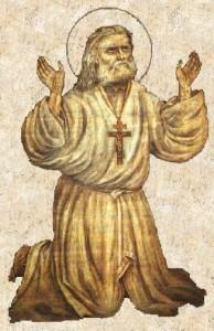 SAROV 12