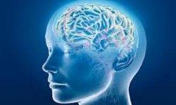 Danni al cervello