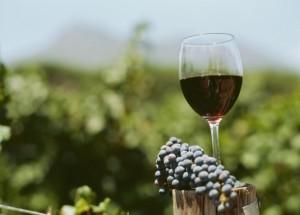 Bicchiere di vino-1185971772_t
