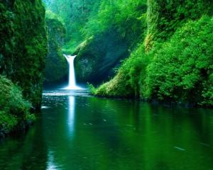 Cascada-in-Natura