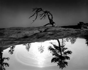 vita-e-morte-nel-riflesso