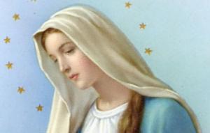 Madonna con le stelle