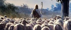 pecore-pastore-imm-ad